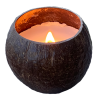 Coconut Bowl Candle with Wood Wick - Coconut